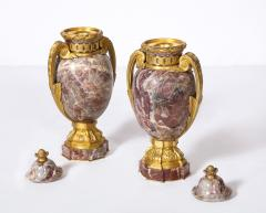 Pair of French Louis XVI Style Bronze Mounted Marble Urns - 1941187