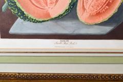 Pair of George Brookshaw Engravings of Melons  - 1917236