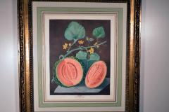Pair of George Brookshaw Engravings of Melons  - 1917237