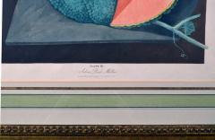 Pair of George Brookshaw Engravings of Melons  - 1917238