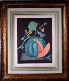 Pair of George Brookshaw Engravings of Melons  - 1917240