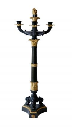 Pair of Gilt and Patinated Bronze Charles X Candelabra - 1739064