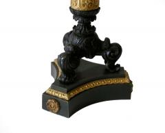 Pair of Gilt and Patinated Bronze Charles X Candelabra - 1739070