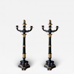 Pair of Gilt and Patinated Bronze Charles X Candelabra - 1741273