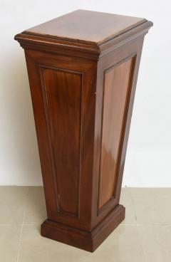 Pair of Italian Neoclassic Faux Bois Painted Pedestals - 60915