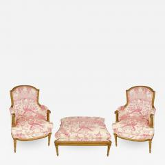 Pair of Louis XVI Style Berg res with Ottoman - 1100919