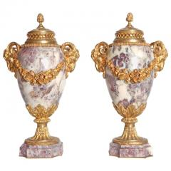Pair of Louis XVI Style Marble Cassolettes with Gilt Bronze Mounts - 2006820