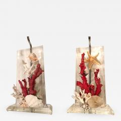 Pair of Lucite Lamps with Coral and Sea Shells - 661037