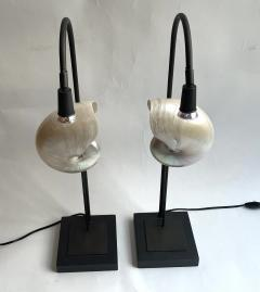 Pair of Nautilus Shell Table Lamps - 2090230