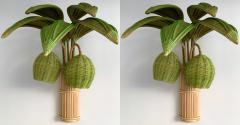 Pair of Rattan Palm Tree Sconces France 1980s - 1183891