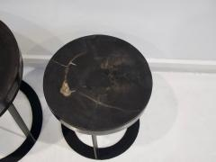 Pair of Round Petrified Wood Side Tables on Black Metal Base - 1260234