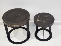 Pair of Round Petrified Wood Side Tables on Black Metal Base - 1260236