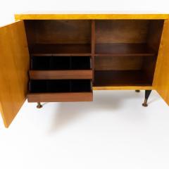 Pair of Scandinavian Mid Century Two Door Low Cabinets - 2002510