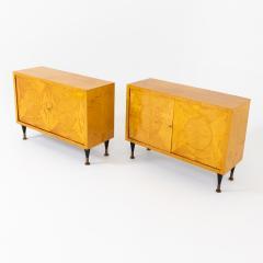 Pair of Scandinavian Mid Century Two Door Low Cabinets - 2002511