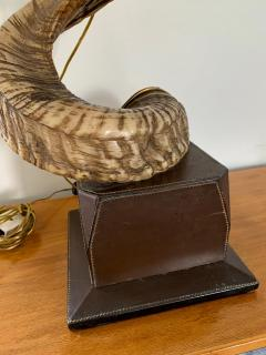 Paolo Gucci Horn table lamp base - 1018511