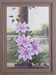 Paul Jones Clemantis Nelly Moser 1971 - 1558905