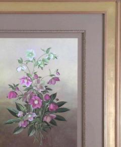 Paul Jones Paul Jones b 1921 Helleborus Orientalis Lenten Rose 1976 - 1558925