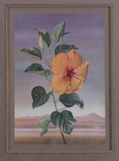 Paul Jones Paul Jones b 1921 Hibiscus Chinese Rose 1971 - 1558670