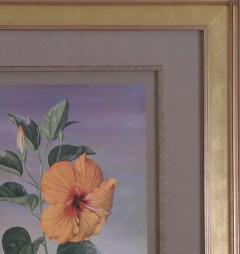 Paul Jones Paul Jones b 1921 Hibiscus Chinese Rose 1971 - 1558671