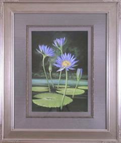 Paul Jones Paul Jones b 1921 Nymphaea Capensis Water Lily 1971 - 1558961