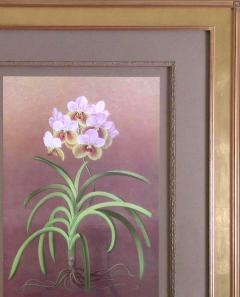 Paul Jones Paul Jones b 1921 Vanda Sanderiana Whaling Whaling Orchid 1976 - 1558956