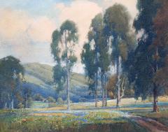 Percy Gray Eucalyptus Trees and Wildflowers - 1105649