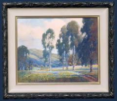 Percy Gray Eucalyptus Trees and Wildflowers - 1105650