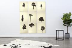 Peter Hoffer Der Wald portfolio of 9 4 of 12 - 1312148