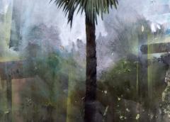 Peter Hoffer Palm Tree - 1115528