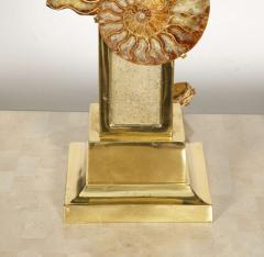Peter Van Heeck 1970s bronze lamp with ammonite by Peter Van Heeck - 729975