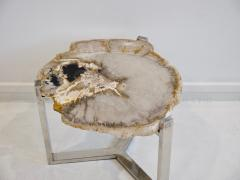 Petrified Wood Side Table on Steel Stand - 1263319