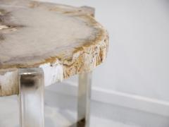 Petrified Wood Side Table on Steel Stand - 1263321