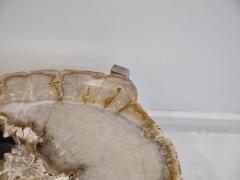 Petrified Wood Side Table on Steel Stand - 1263322