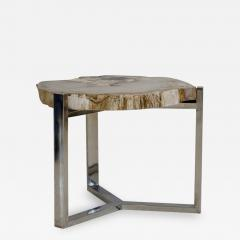Petrified Wood Side Table on Steel Stand - 1263729