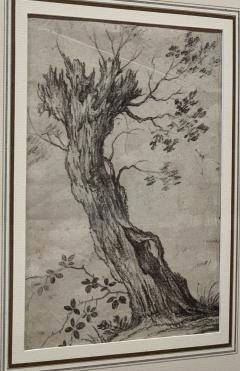 Philips Wouwerman Pair of Tree Studies - 1002205