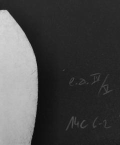 Pierre Muckensturm 14C6 - 1388643