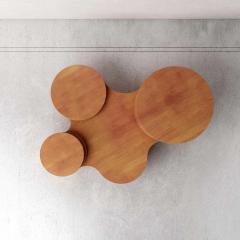 Pietro Franceschini Wood Slice Me Up Sculptural Coffee Table by Pietro Franceschini - 1758629