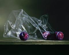 Plums in Plastic Contemporary Giclee by Dario Campanile - 2011459
