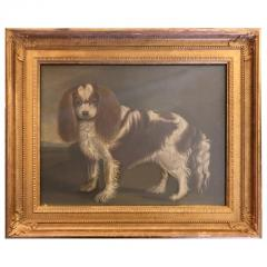 Portrait of a Cavalier King Charles Spaniel Oil on Canvas 20th Century - 1092820