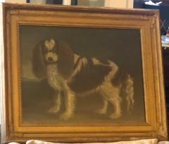 Portrait of a Cavalier King Charles Spaniel Oil on Canvas 20th Century - 1092822