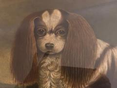 Portrait of a Cavalier King Charles Spaniel Oil on Canvas 20th Century - 1092827