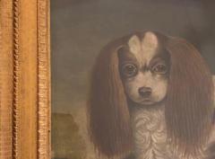 Portrait of a Cavalier King Charles Spaniel Oil on Canvas 20th Century - 1092828