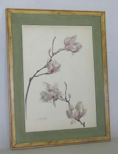 Rare Set of Floral Watercolors by Accard - 519596