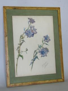 Rare Set of Floral Watercolors by Accard - 519605