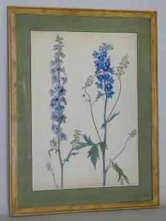 Rare Set of Floral Watercolors by Accard - 519606
