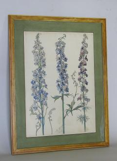 Rare Set of Floral Watercolors by Accard - 519607