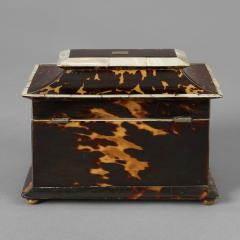 Rare Tortoise Shell and Mother of Pearl Tea Caddy - 225244