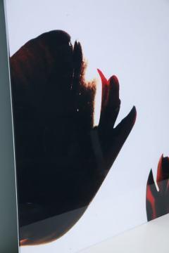 Renato Freitas Renato Freitas Black Tulips Original Photography - 348455