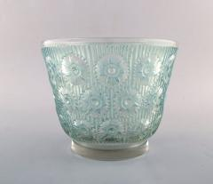 Rene Lalique Early large Edelweiss bowl in turquoise art glass decorated with flowers - 1422947