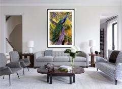 Robert Funk Peacock in Tree with Iridescent Blue and Green Plumage - 2132599